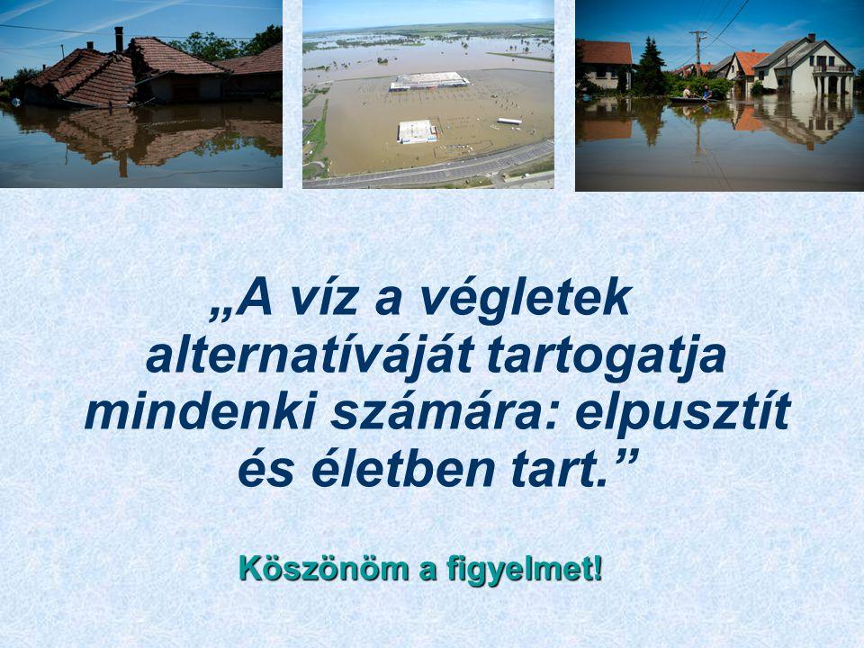 """""""A víz a végletek alternatíváját tartogatja mindenki számára: elpusztít és életben tart. Köszönöm a figyelmet!"""