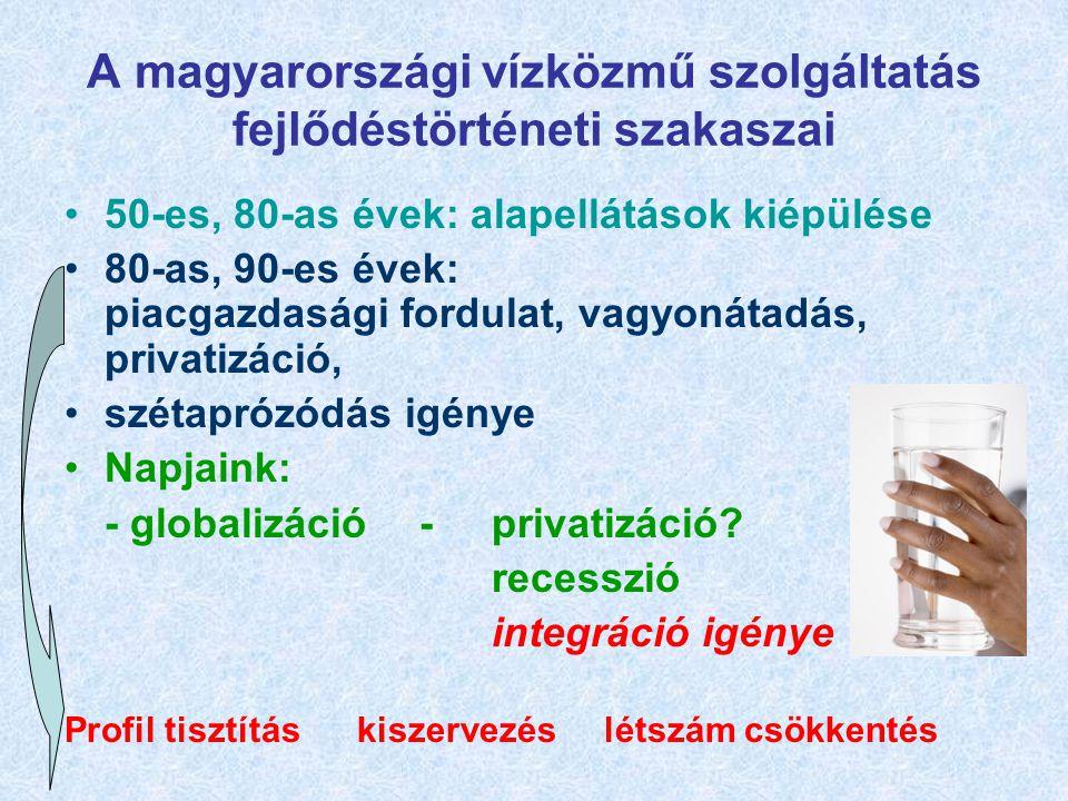 A magyarországi vízközmű szolgáltatás fejlődéstörténeti szakaszai 50-es, 80-as évek: alapellátások kiépülése 80-as, 90-es évek: piacgazdasági fordulat, vagyonátadás, privatizáció, szétaprózódás igénye Napjaink: - globalizáció -privatizáció.
