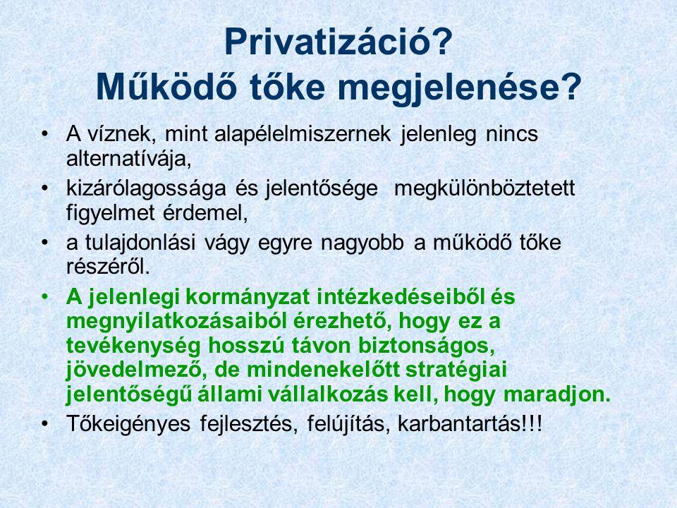 Privatizáció. Működő tőke megjelenése.