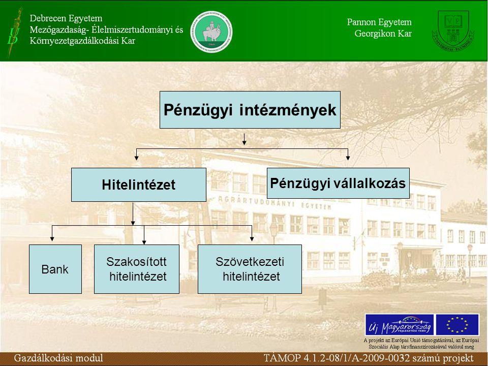Pénzügyi intézmények Hitelintézet Pénzügyi vállalkozás Bank Szakosított hitelintézet Szövetkezeti hitelintézet