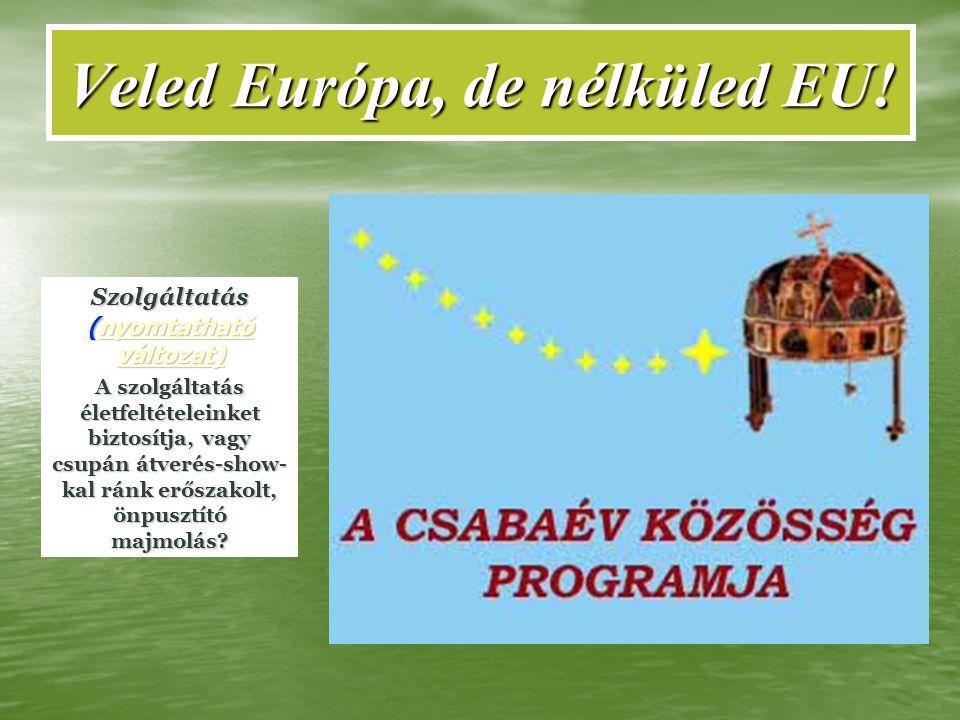 Veled Európa, de nélküled EU! Szolgáltatás (nyomtatható változat) nyomtatható változat)nyomtatható változat) A szolgáltatás életfeltételeinket biztosí