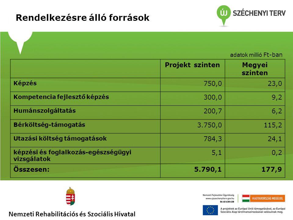 Rendelkezésre álló források Nemzeti Rehabilitációs és Szociális Hivatal Projekt szintenMegyei szinten Képzés 750,023,0 Kompetencia fejlesztő képzés 30