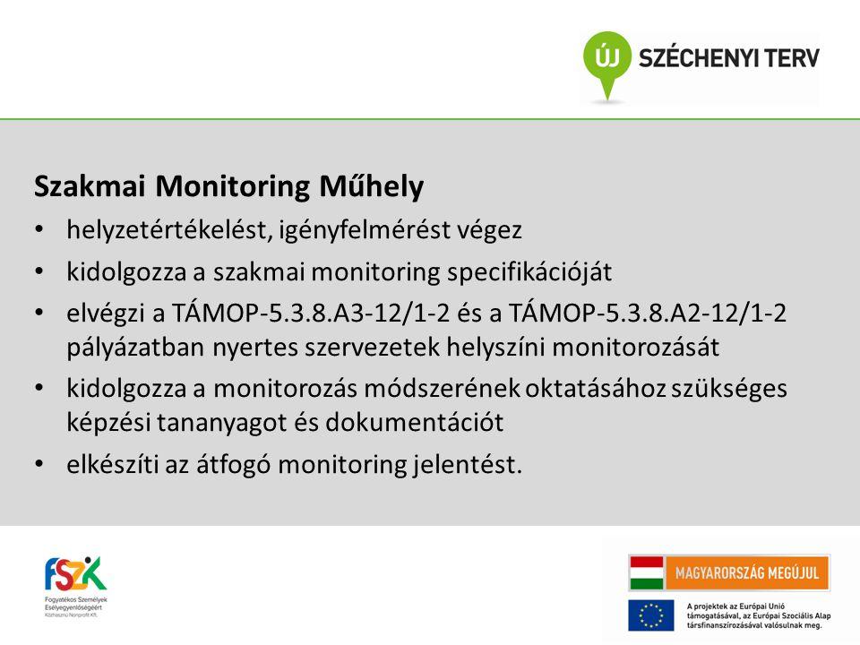 Szakmai Monitoring Műhely helyzetértékelést, igényfelmérést végez kidolgozza a szakmai monitoring specifikációját elvégzi a TÁMOP-5.3.8.A3-12/1-2 és a TÁMOP-5.3.8.A2-12/1-2 pályázatban nyertes szervezetek helyszíni monitorozását kidolgozza a monitorozás módszerének oktatásához szükséges képzési tananyagot és dokumentációt elkészíti az átfogó monitoring jelentést.