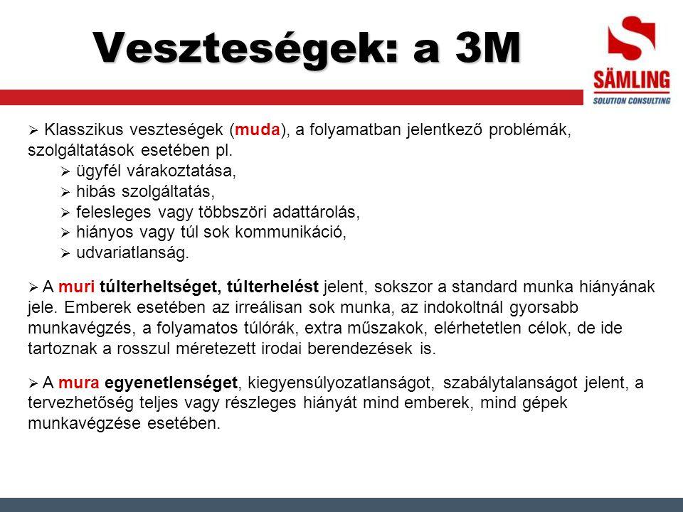 Veszteségek: a 3M  Klasszikus veszteségek (muda), a folyamatban jelentkező problémák, szolgáltatások esetében pl.  ügyfél várakoztatása,  hibás szo