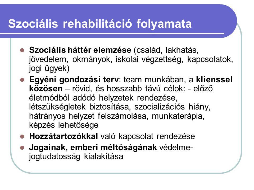 Szociális rehabilitáció folyamata Szociális háttér elemzése (család, lakhatás, jövedelem, okmányok, iskolai végzettség, kapcsolatok, jogi ügyek) Egyén