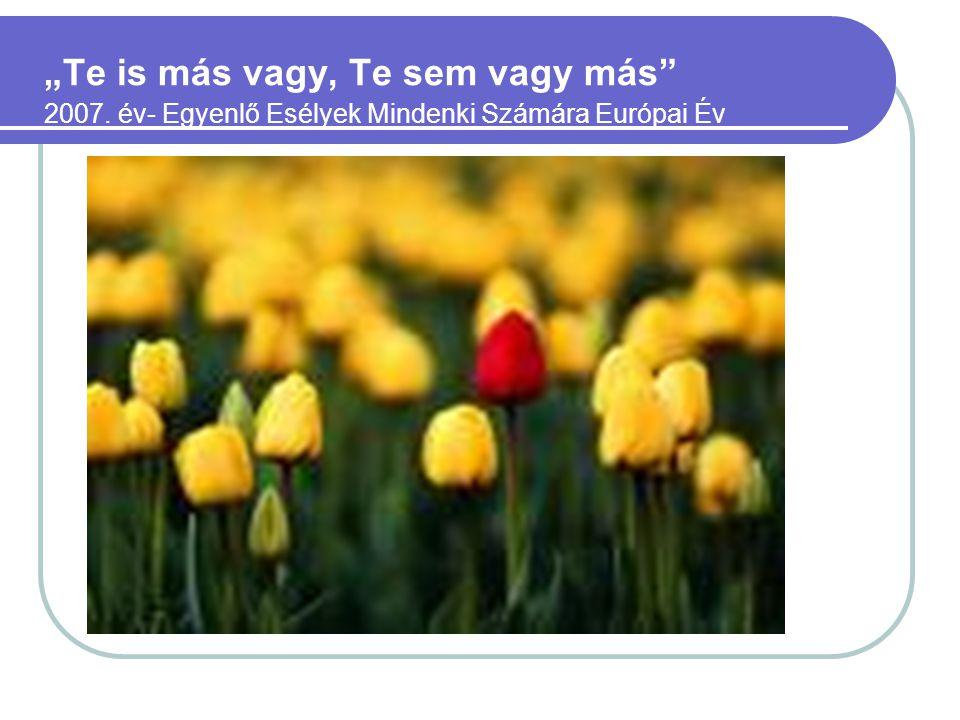 """""""Te is más vagy, Te sem vagy más"""" 2007. év- Egyenlő Esélyek Mindenki Számára Európai Év"""