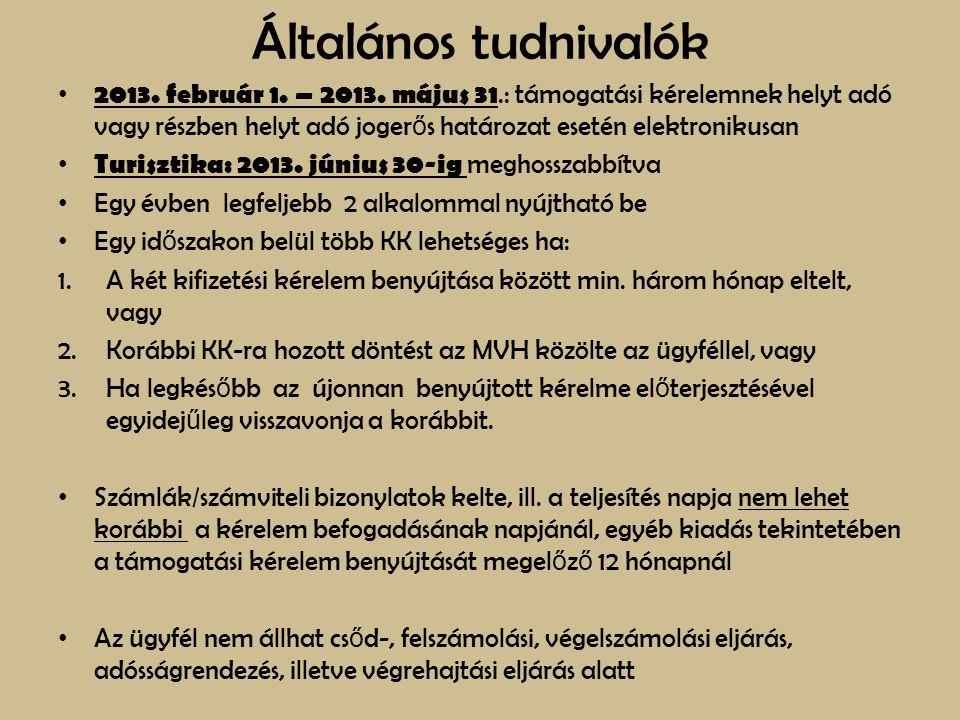 Általános tudnivalók 2013. február 1. – 2013. május 31.: támogatási kérelemnek helyt adó vagy részben helyt adó joger ő s határozat esetén elektroniku