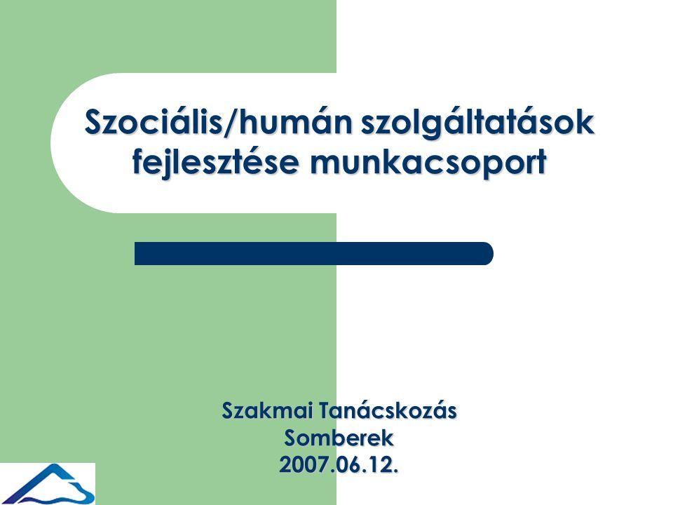 Szociális/humán szolgáltatások fejlesztése munkacsoport Szakmai Tanácskozás Somberek2007.06.12.