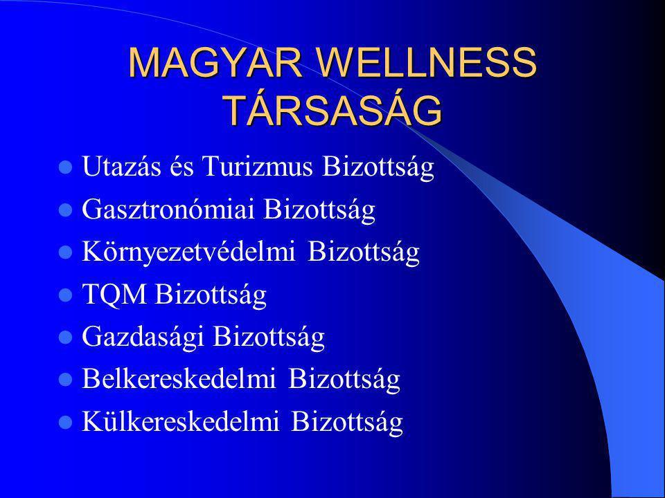 A szállodák a wellness szolgáltatások potenciális helyszínei Városi szállodák City Hotels Üdülőszállodák Resort Hotels Gyógyszállodák SPA-Wellness Hotels