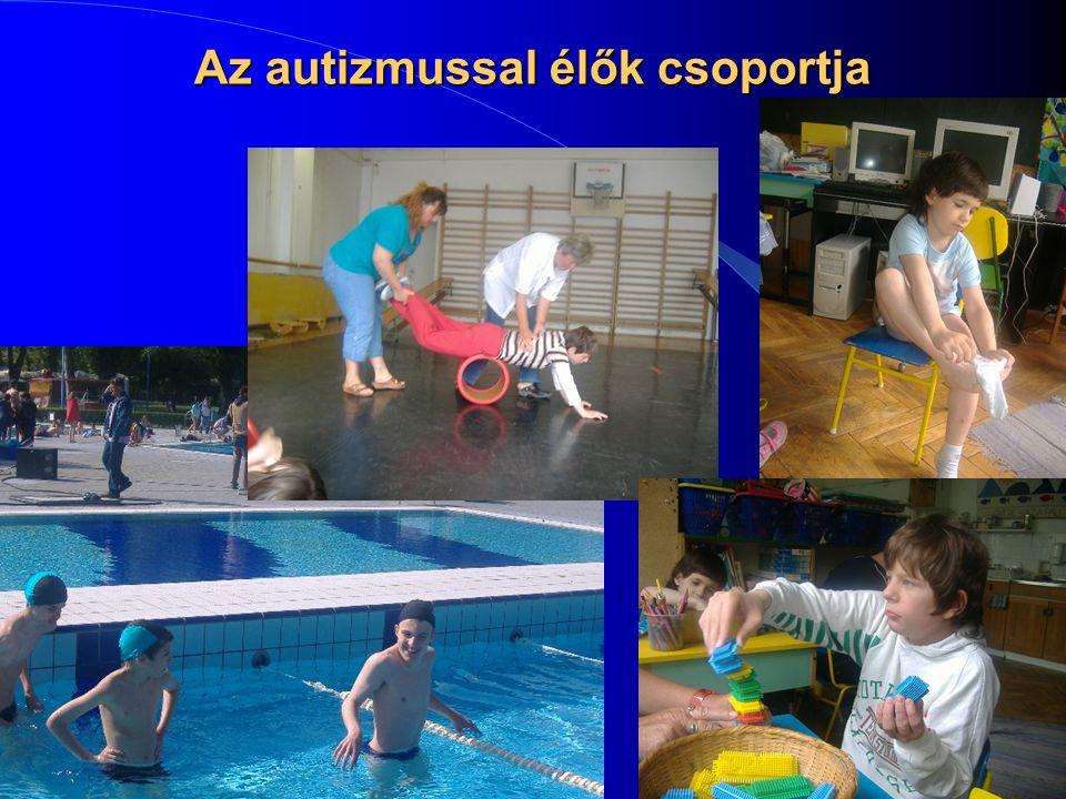 2014. 07. 06.7 Az autizmussal élők csoportja