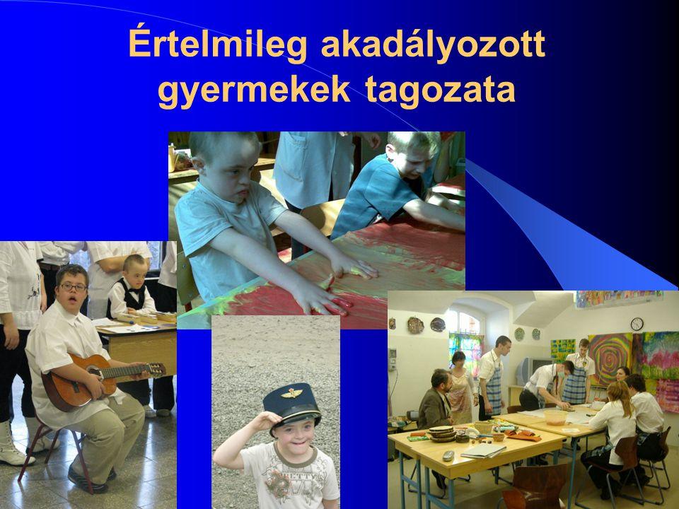 2014. 07. 06.8 Értelmileg akadályozott gyermekek tagozata