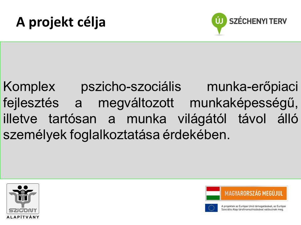 Ügyfél fejlesztése, belső erőforrások biztosítása a jobb munkaerő-piaci részvétel érdekében: Állapotfelmérés Konzultáció a munkapszichológussal, klinikai szakpszichológussal Egyéni fejlesztési terv készítése Komplex szociális és munkerőpiaci fejlesztés az egyéni terv alapján Esetmenedzser feladatai II.