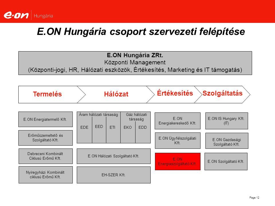 Page 12 E.ON Hungária ZRt. Központi Management (Központi-jogi, HR, Hálózati eszközök, Értékesítés, Marketing és IT támogatás) E.ON IS Hungary Kft. (IT