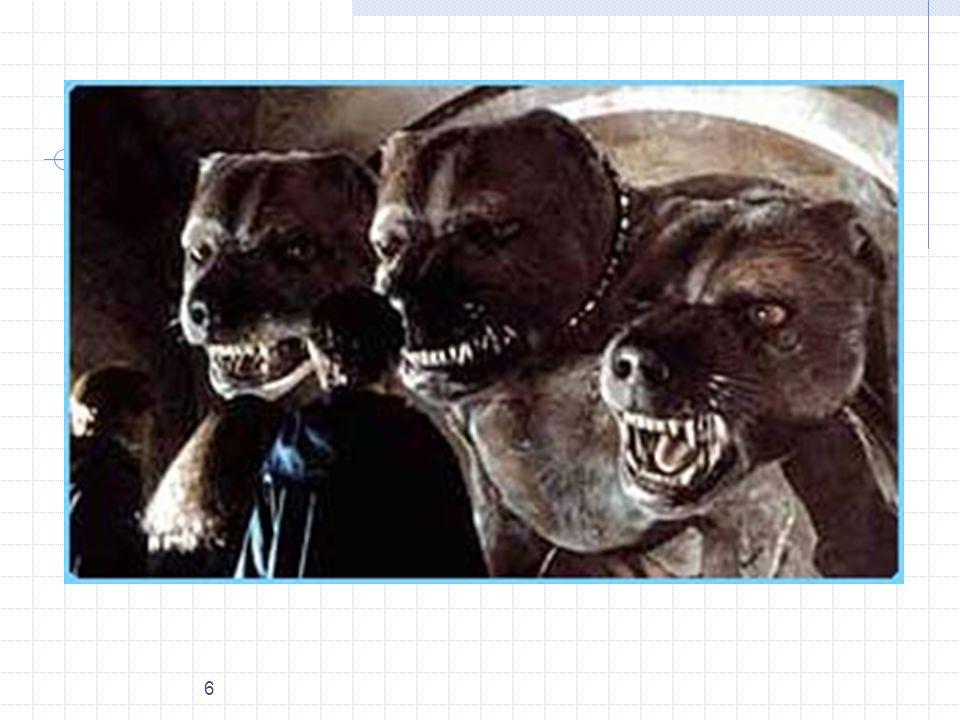 7 Fluffy, a 3 fejű kutya a Harry Potter and the Sorcerers Stone filmből