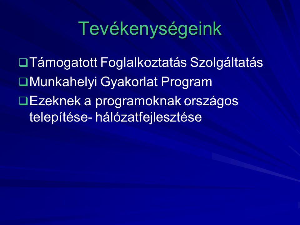 Tevékenységeink   Támogatott Foglalkoztatás Szolgáltatás   Munkahelyi Gyakorlat Program   Ezeknek a programoknak országos telepítése- hálózatfejlesztése