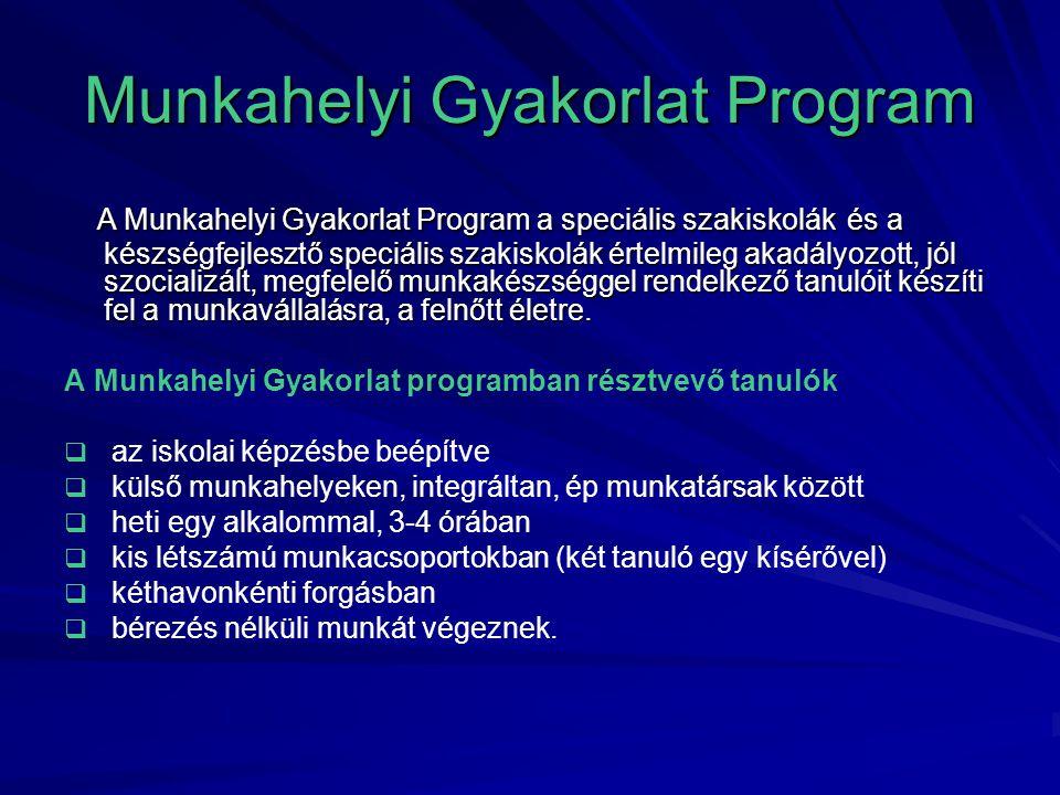 Munkahelyi Gyakorlat Program A Munkahelyi Gyakorlat Program a speciális szakiskolák és a készségfejlesztő speciális szakiskolák értelmileg akadályozot