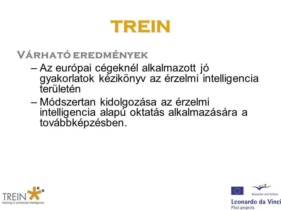 TREIN Várható eredmények –Az európai cégeknél alkalmazott jó gyakorlatok kézikönyv az érzelmi intelligencia területén –Módszertan kidolgozása az érzelmi intelligencia alapú oktatás alkalmazására a továbbképzésben.