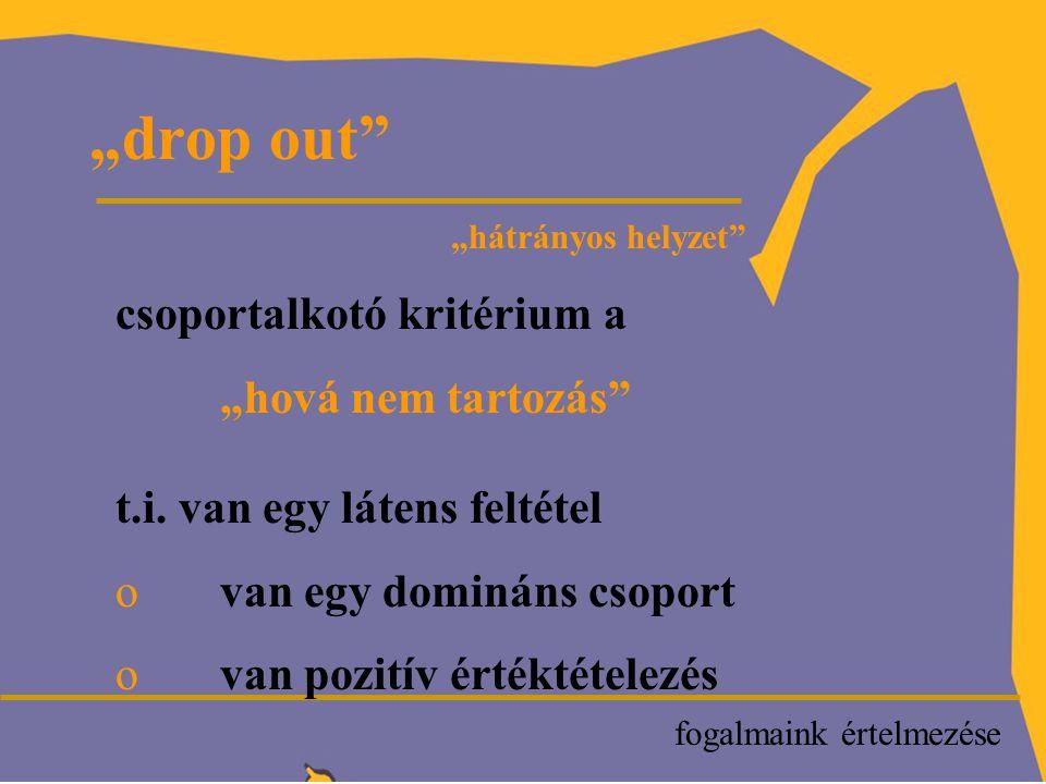 """""""drop out fogalmaink értelmezése """"hátrányos helyzet csoportalkotó kritérium a """"hová nem tartozás t.i."""
