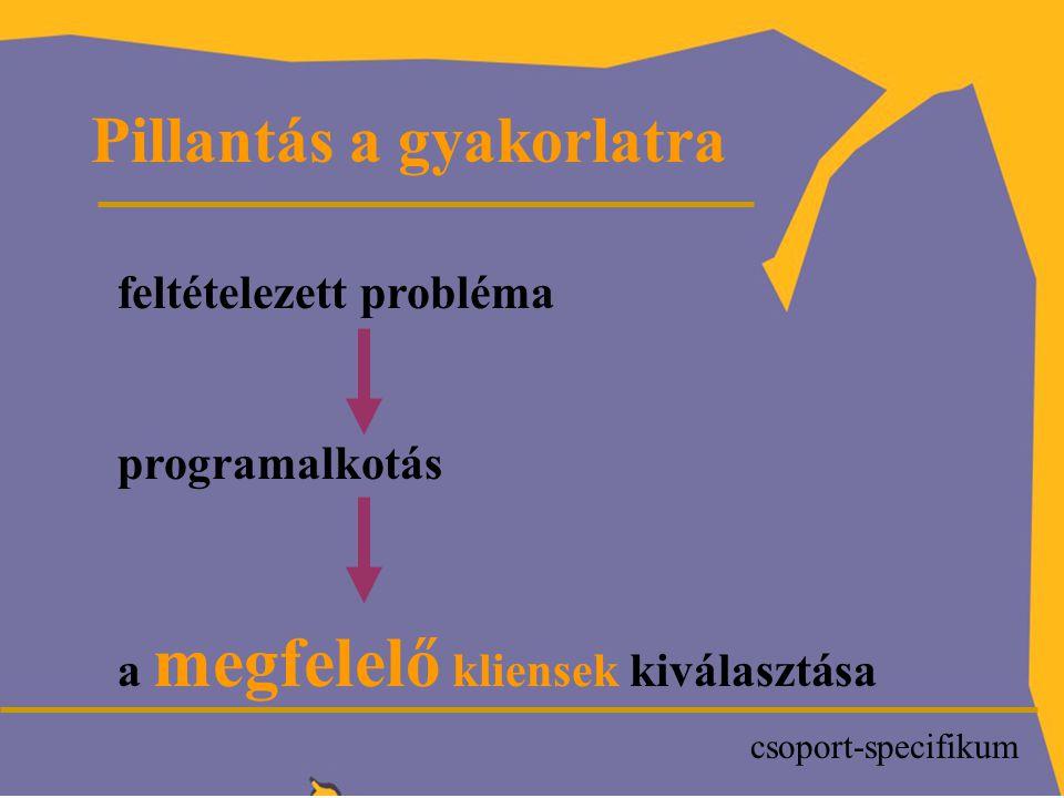 P Pillantás a gyakorlatra feltételezett probléma programalkotás a megfelelő kliensek kiválasztása csoport-specifikum