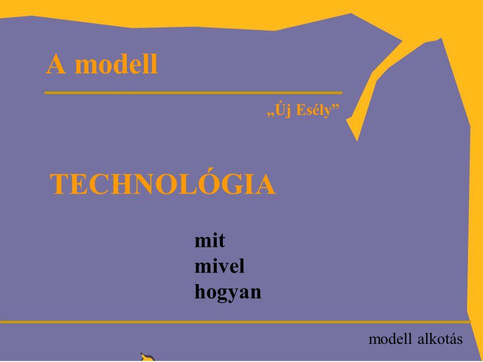 """P """"Új Esély SZOLGÁLTATÁS létjogosultsága (probléma) eredményesség hatékonyság A tevékenység jellege modell alkotás"""