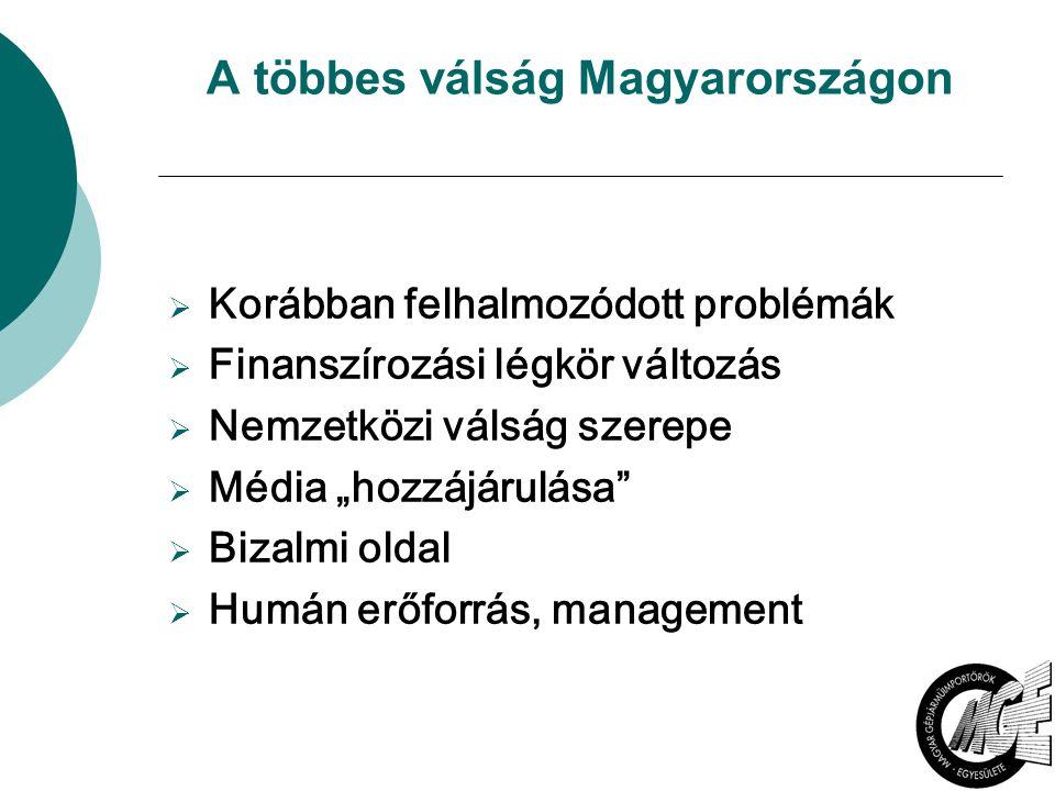 """A többes válság Magyarországon  Korábban felhalmozódott problémák  Finanszírozási légkör változás  Nemzetközi válság szerepe  Média """"hozzájárulása"""
