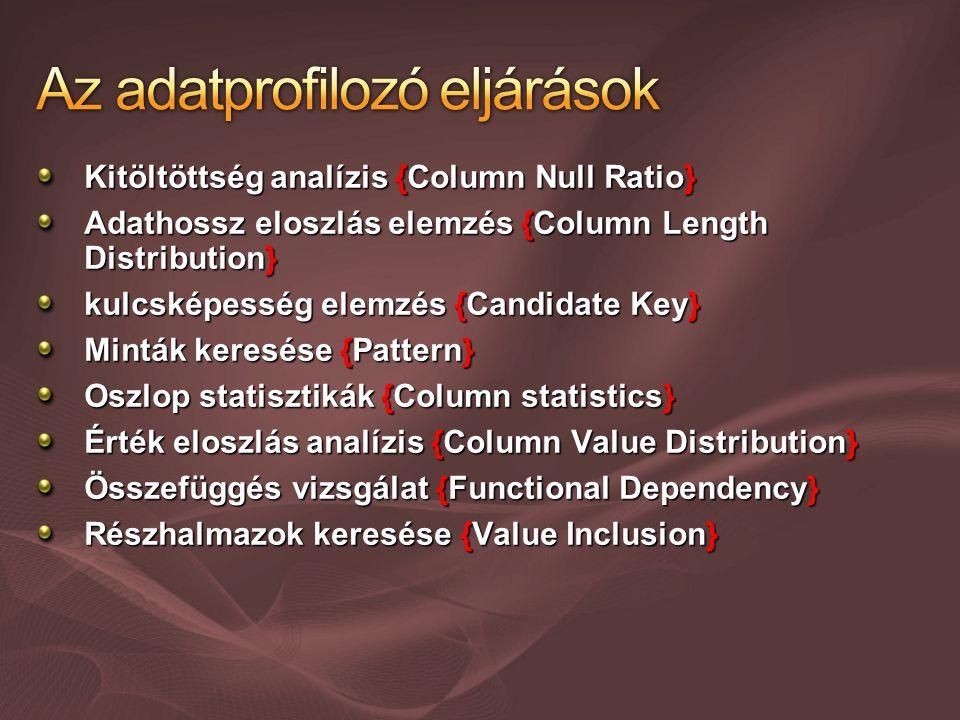 Kitöltöttség analízis {Column Null Ratio} Adathossz eloszlás elemzés {Column Length Distribution} kulcsképesség elemzés {Candidate Key} Minták keresése {Pattern} Oszlop statisztikák {Column statistics} Érték eloszlás analízis {Column Value Distribution} Összefüggés vizsgálat {Functional Dependency} Részhalmazok keresése {Value Inclusion}
