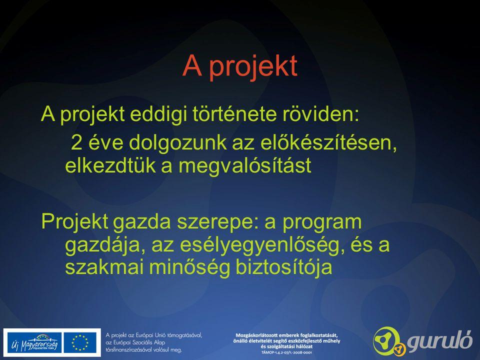 A projekt A projekt eddigi története röviden: 2 éve dolgozunk az előkészítésen, elkezdtük a megvalósítást Projekt gazda szerepe: a program gazdája, az esélyegyenlőség, és a szakmai minőség biztosítója