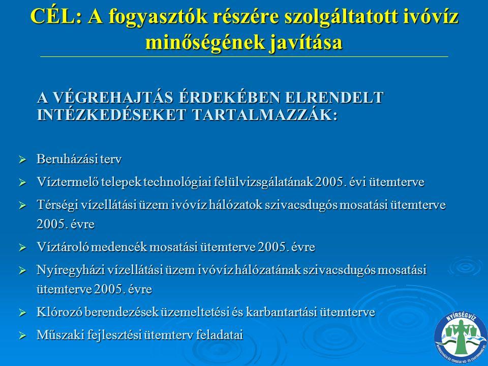A VÉGREHAJTÁS ÉRDEKÉBEN ELRENDELT INTÉZKEDÉSEKET TARTALMAZZÁK:  Beruházási terv  Víztermelő telepek technológiai felülvizsgálatának 2005. évi ütemte
