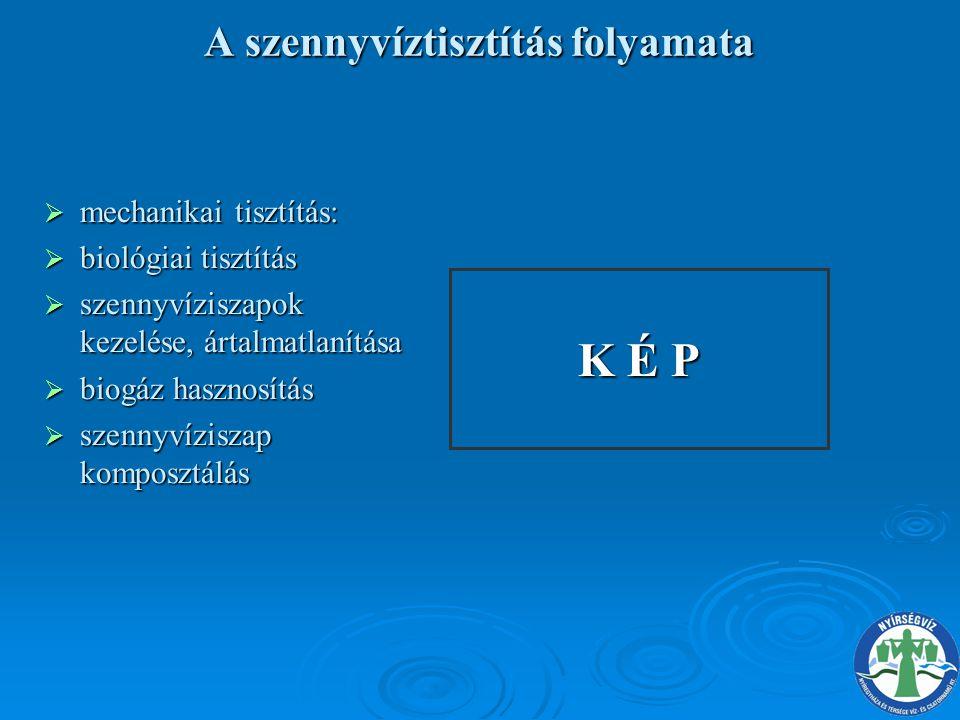 A VÉGREHAJTÁS ÉRDEKÉBEN ELRENDELT INTÉZKEDÉSEKET TARTALMAZZÁK:  Beruházási terv  Víztermelő telepek technológiai felülvizsgálatának 2005.
