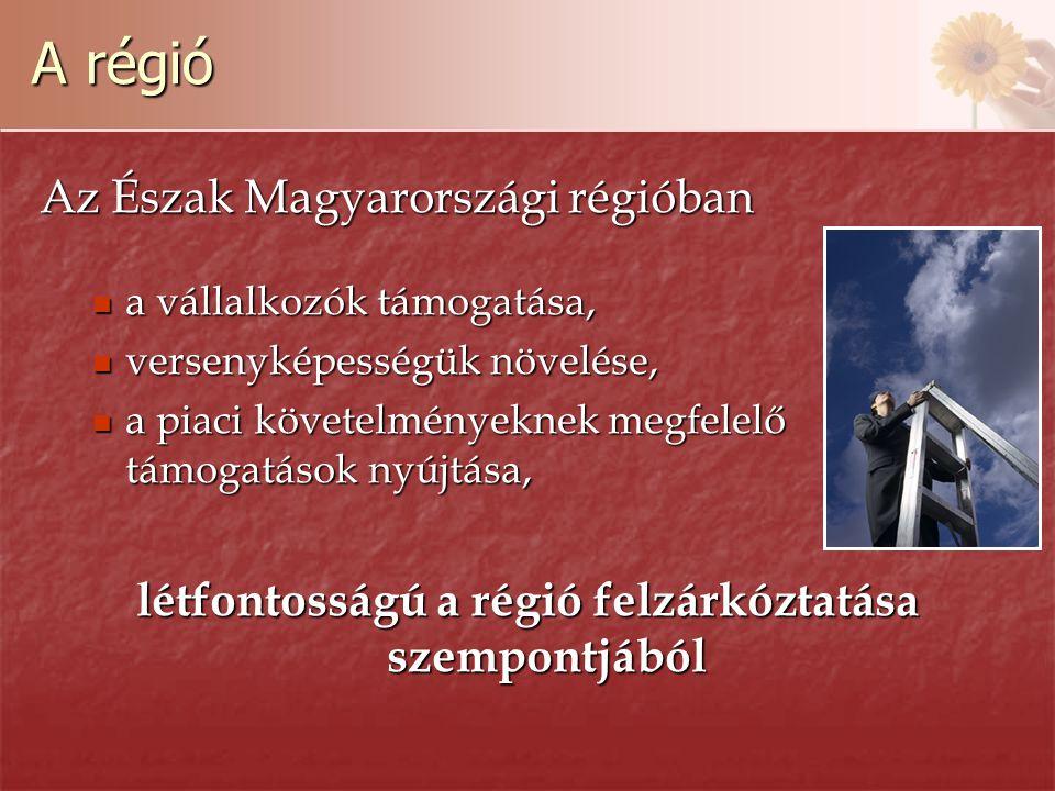 A régió Az Észak Magyarországi régióban a vállalkozók támogatása, a vállalkozók támogatása, versenyképességük növelése, versenyképességük növelése, a piaci követelményeknek megfelelő támogatások nyújtása, a piaci követelményeknek megfelelő támogatások nyújtása, létfontosságú a régió felzárkóztatása szempontjából