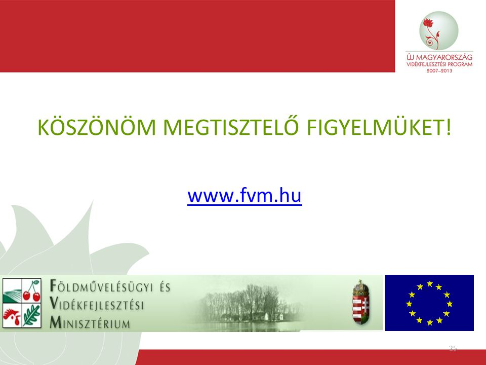 25 KÖSZÖNÖM MEGTISZTELŐ FIGYELMÜKET! www.fvm.hu