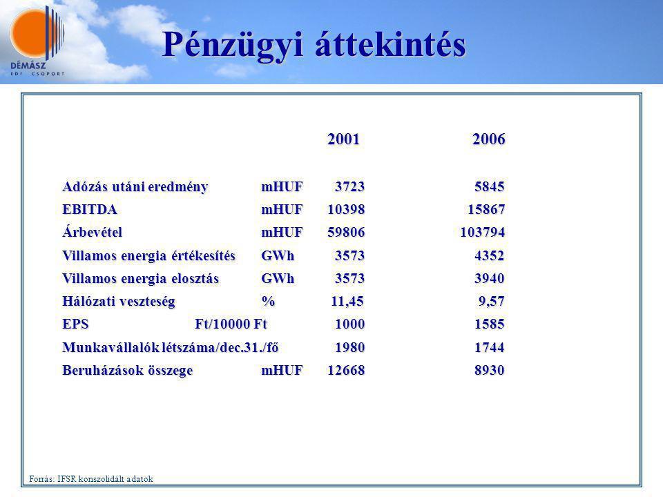 2001 2006 Adózás utáni eredménymHUF 3723 5845 EBITDAmHUF10398 15867 ÁrbevételmHUF59806103794 Villamos energia értékesítésGWh 3573 4352 Villamos energi