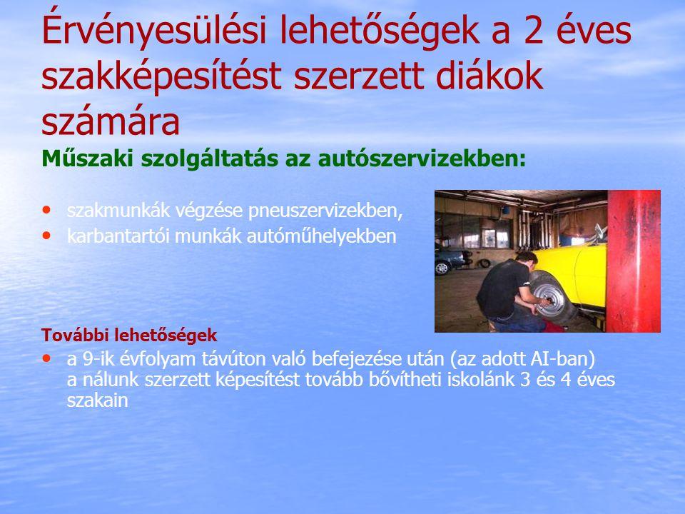 Érvényesülési lehetőségek a 2 éves szakképesítést szerzett diákok számára Műszaki szolgáltatás az autószervizekben: szakmunkák végzése pneuszervizekbe