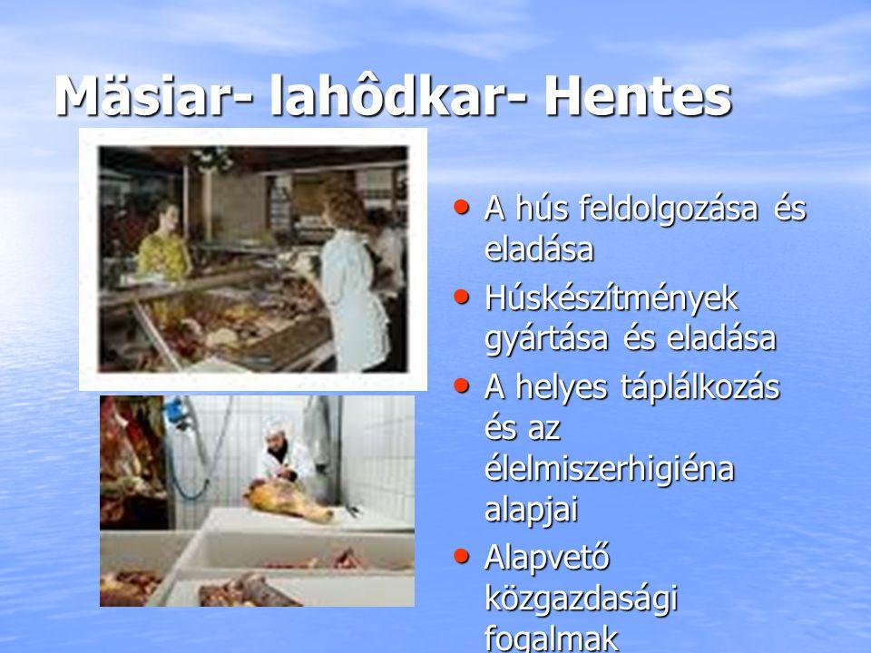 Mäsiar- lahôdkar- Hentes A hús feldolgozása és eladása A hús feldolgozása és eladása Húskészítmények gyártása és eladása Húskészítmények gyártása és e