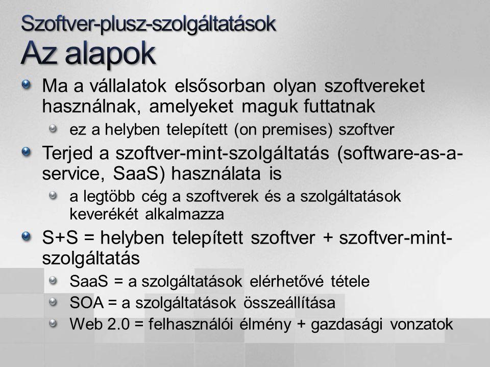 szolgáltató (service provider) vállalat kiszolgáló szoftver ügyfél- szoftver kiszolgáló szoftver szolgáltatás helyben telepített szoftver