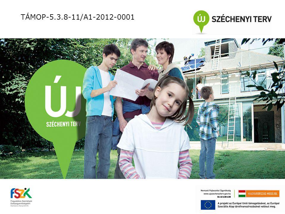 A nyílt munkaerő-piaci munkáltatókkal való kapcsolatfelvétel tevékenységei: tájékozódás a térség munkáltatóiról munkáltatói lista elkészítése kapcsolatfelvétel és személyes találkozó munkáltatókkal megállapodás a további együttműködésről TÁMOP-5.3.8-11/A1-2012-0001