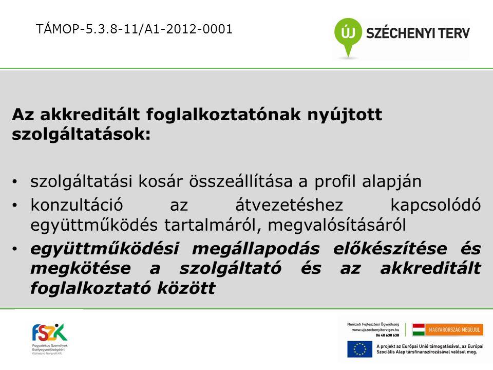 Az akkreditált foglalkoztatónak nyújtott szolgáltatások: szolgáltatási kosár összeállítása a profil alapján konzultáció az átvezetéshez kapcsolódó egy