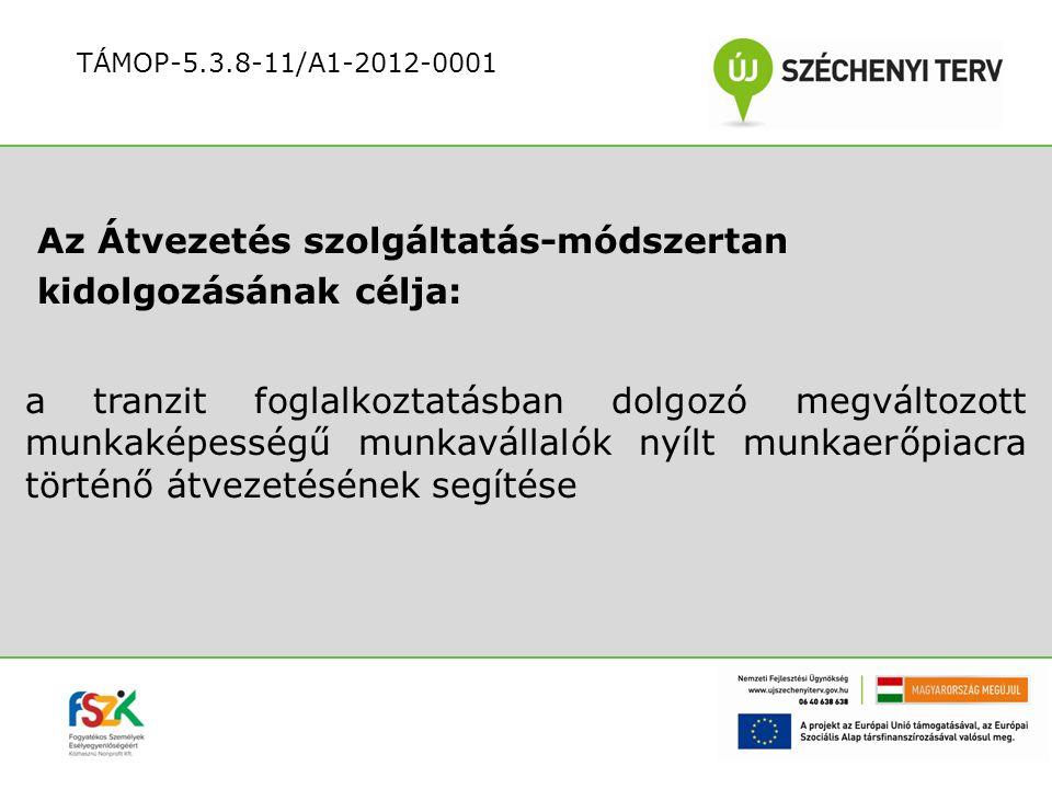 Az ügyfél felkészítése a nyílt munkaerő-piaci munkavállalásra: az Egyéni Munkavállalási Terv kivitelezése, az ügyfél felkészítése TÁMOP-5.3.8-11/A1-2012-0001