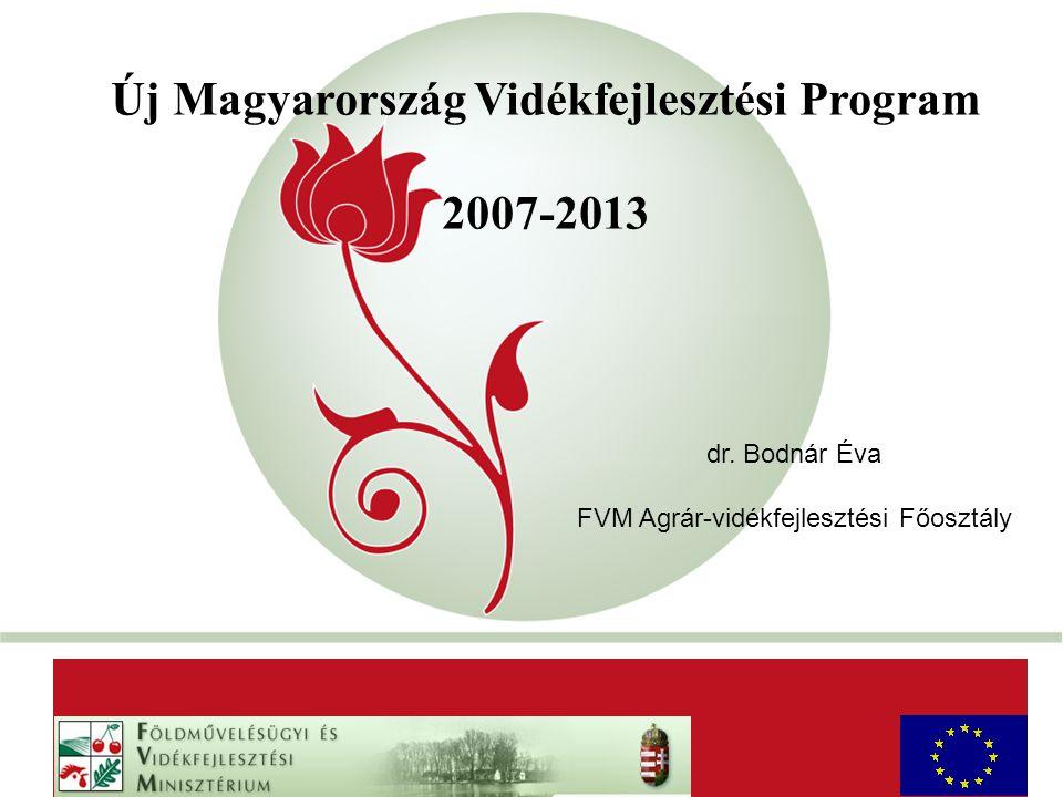 """""""New Hungary"""" Rural Development Programme 2007-2013 Új Magyarország Vidékfejlesztési Program 2007-2013 AaAa dr. Bodnár Éva FVM Agrár-vidékfejlesztési"""