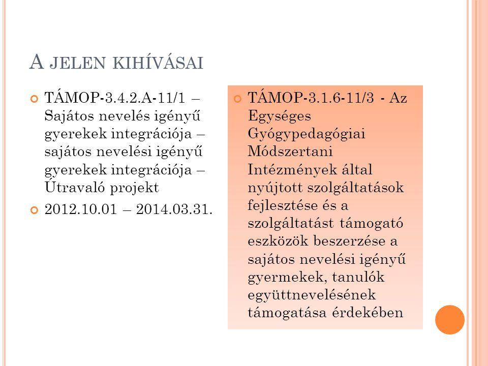 P RIZMA TÁRHÁZ – SZEMÉLYRE SZABOTT SZOLGÁLTATÁS Előzmények – TÁMOP 3.1.6/08 pályázat Megvalósítás – önálló intézményi projekt Kötelező és választható tevékenységek Költségvetés Tervezett összeg: 30.000.000 Ft Elnyert támogatás:28.397.620 Ft Projekt időszak Tervezett:2012.01.01 – 2013.08.31.