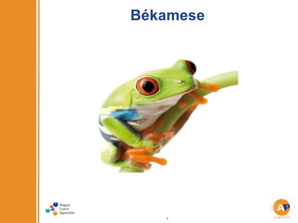Békamese 4