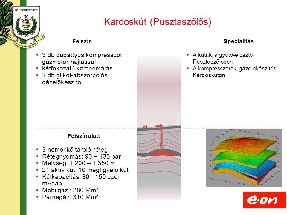 15 Felszín alatt  3 homokkő tároló-réteg  Rétegnyomás: 90 – 135 bar  Mélység: 1.200 – 1.350 m  21 aktív kút, 10 megfigyelő kút  Kútkapacitás: 80