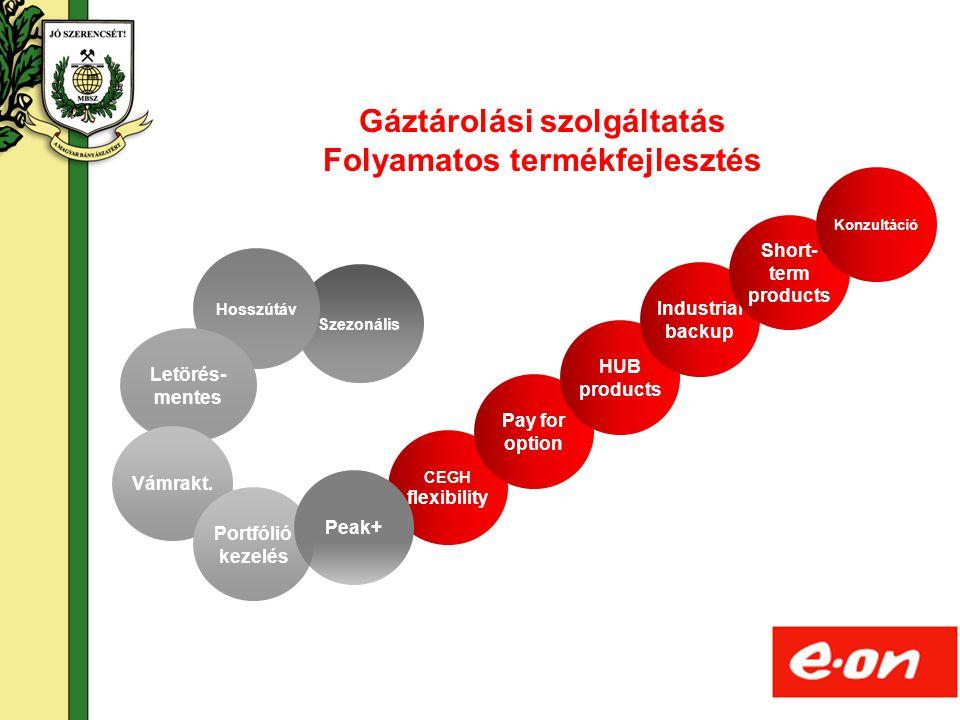18 Szezonális Hosszútáv CEGH flexibility Pay for option HUB products Letörés- mentes Gáztárolási szolgáltatás Folyamatos termékfejlesztés Industrial b