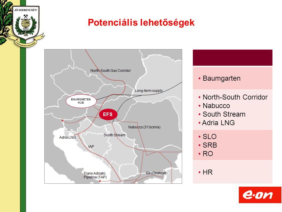 19 Baumgarten North-South Corridor Nabucco South Stream Adria LNG SLO SRB RO HR Potenciális lehetőségek BAUMGARTEN HUB EFS