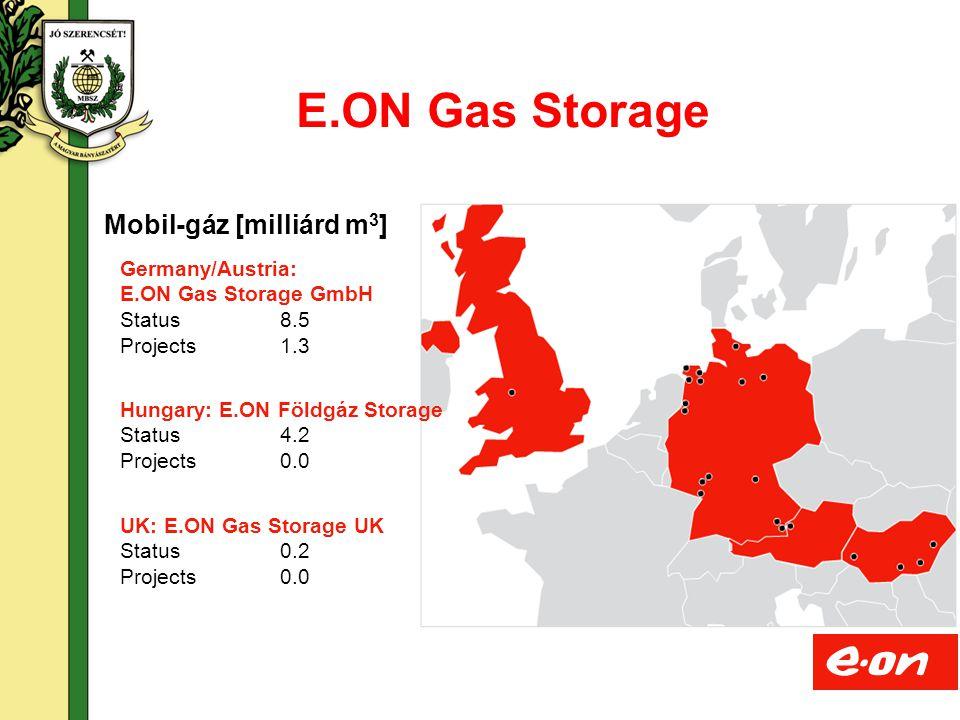 16 Nemzetközi, nemzeti szabályozási környezet Gáztörvény (XV/2008) Gáztörvény Vhr (19/2009) ÜKSZÜzletszabályzat GGPSSO (Guidelines for Good TPA Practice for Storage System Operators) Gas Directive 2009/73/EC Regulation 715/2009/EC