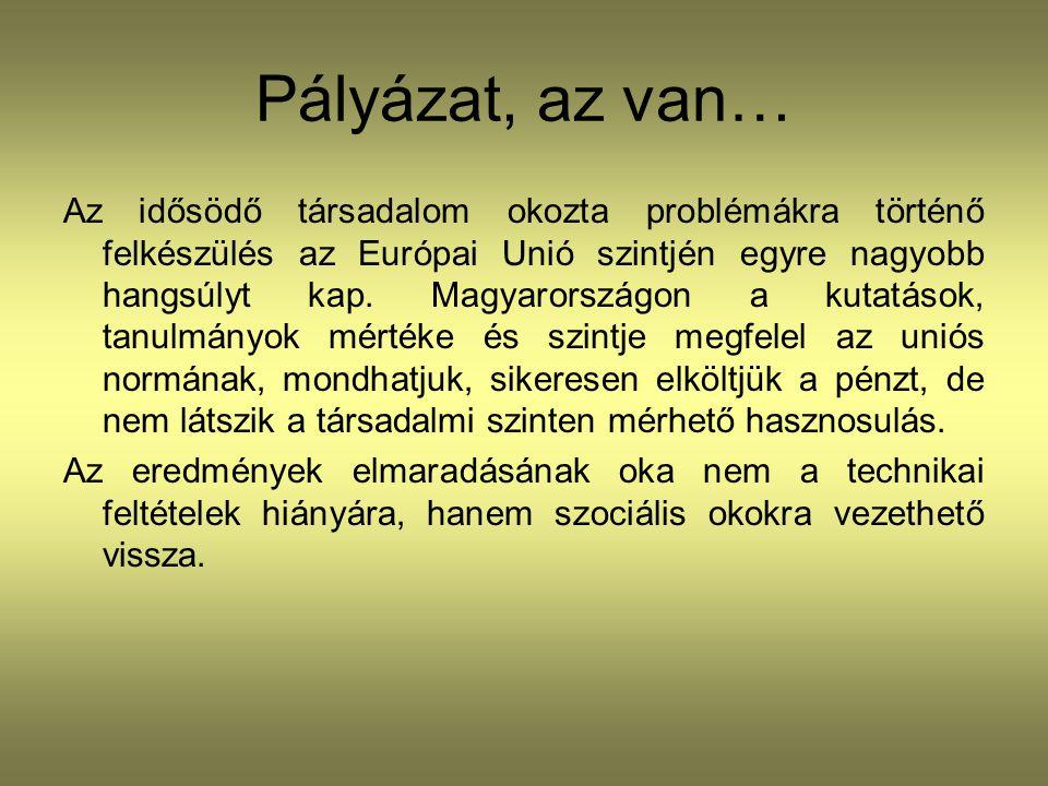 Pályázat, az van… Az idősödő társadalom okozta problémákra történő felkészülés az Európai Unió szintjén egyre nagyobb hangsúlyt kap. Magyarországon a