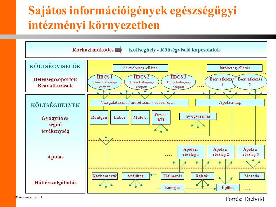 © Andersen 2001 Sajátos információigények egészségügyi intézményi környezetben Kórházi működés Költséghely - Költségviselő kapcsolatok KÖLTSÉGVISELŐK Betegségcsoportok Beavatkozások KÖLTSÉGHELYEK Gyógyító és segítő tevékenység Ápolás Háttérszolgáltatás KarbantartásSzállításÉlelmezésRaktár Épület Mosoda Energia Ápolási részleg 1 Ápolási részleg 2 Ápolási részleg 3 Vizsgálatszám / műtétszám / orvosi óra...Ápolási nap RöntgenLaborMűtő o.