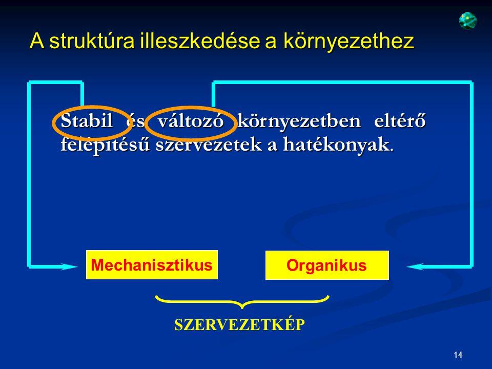 15 SZERVEZETKÉP Mechanisztikus 1.A feladatok nagymértékben szakosodtak 2.