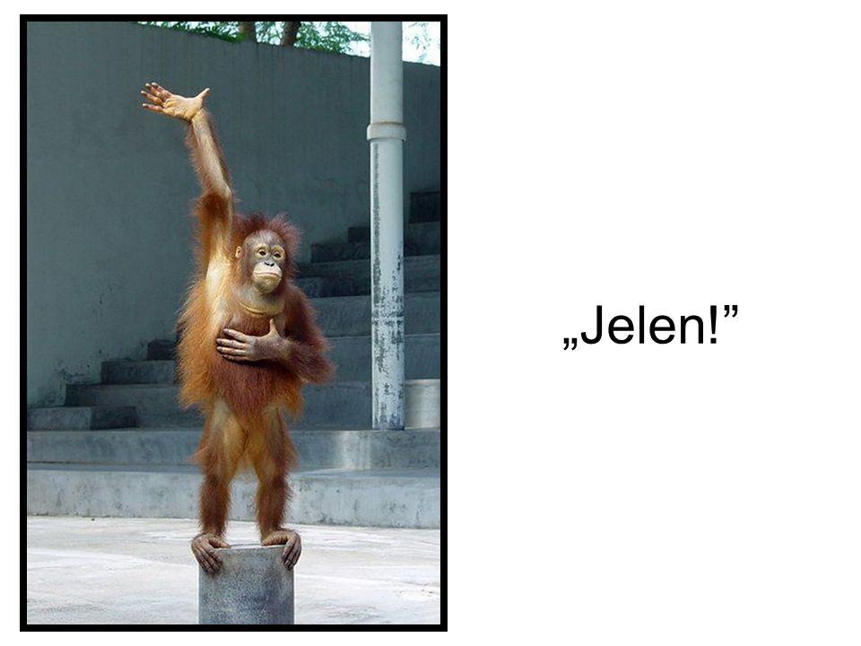 """""""Jelen!"""
