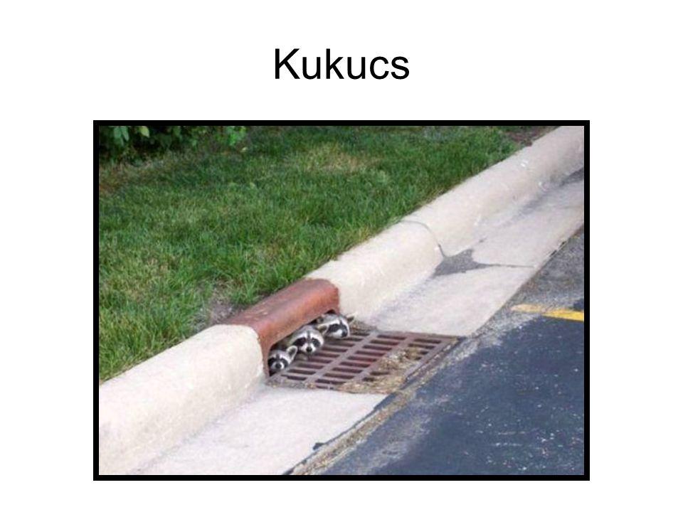 Kukucs